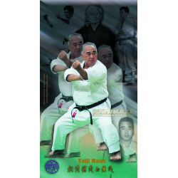 Poster-collage master Taiji Kase, color, 40x70 cm (Shotokan ryu kase ha)